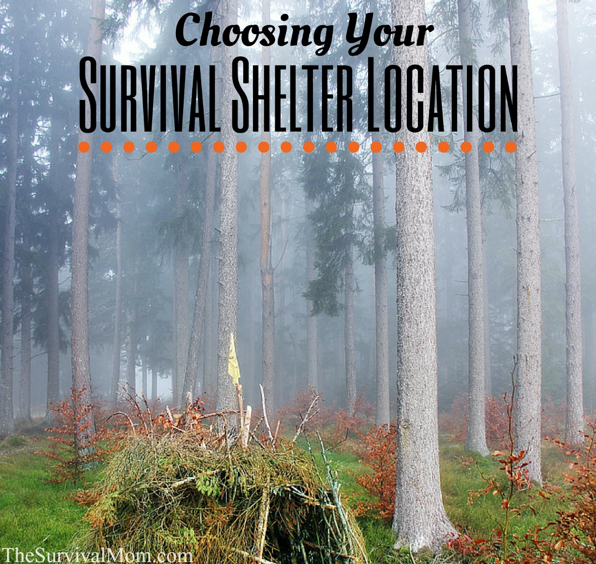 survival shelter FB size