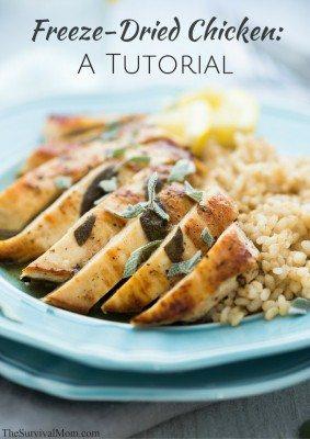 Freeze-Dried Chicken: A Tutorial