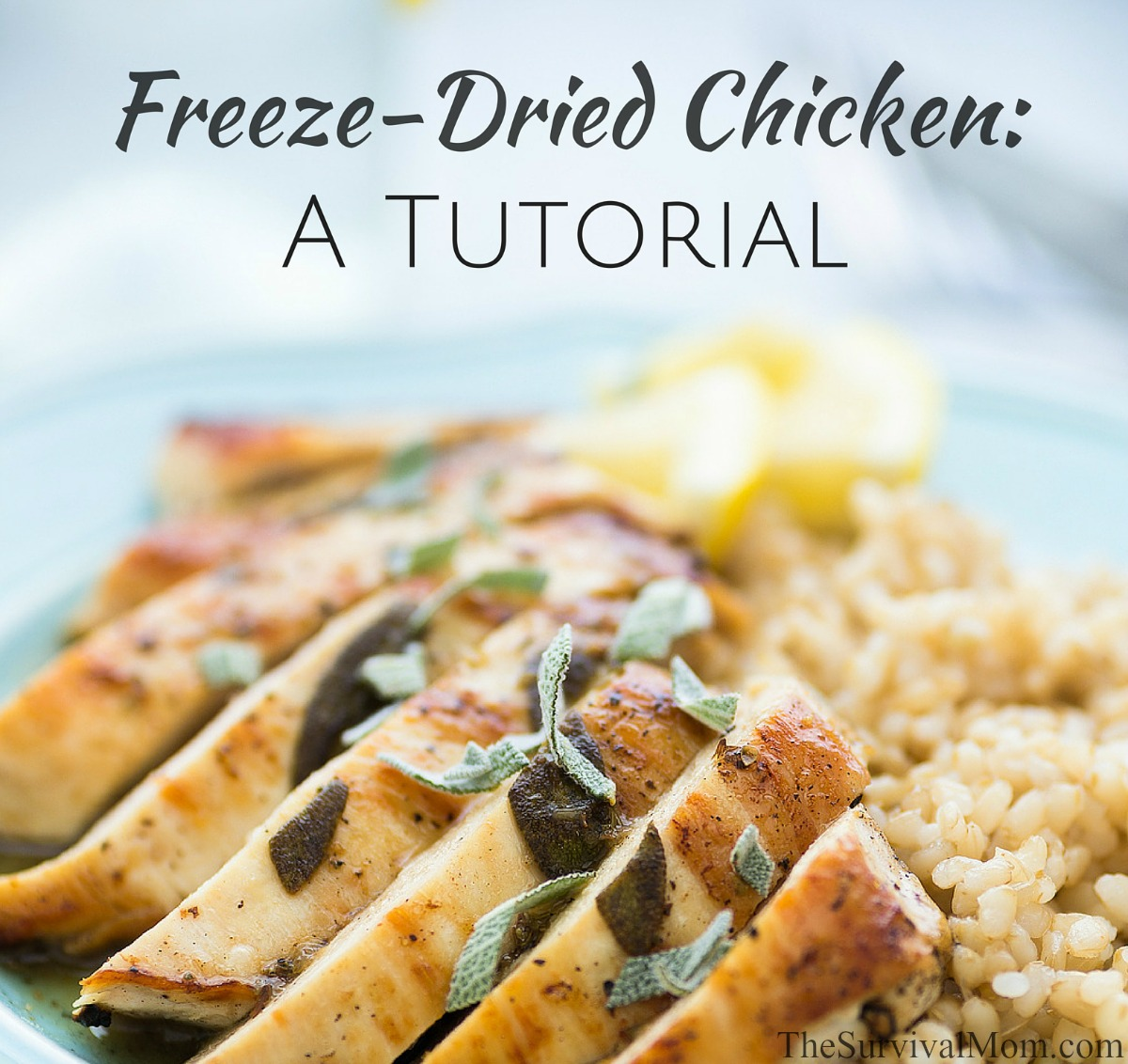 Freeze-Dried Chicken: A Tutorial via The Survival Mom