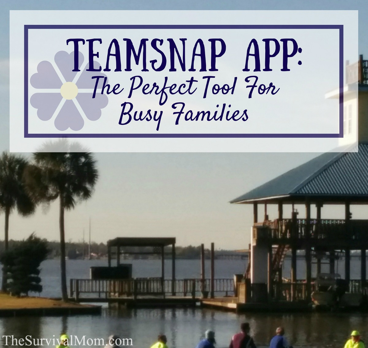 TeamSnap App: The Perfect Tool For Busy Families via The Survival Mom