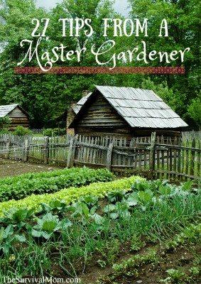 27 Tips from a Master Gardener