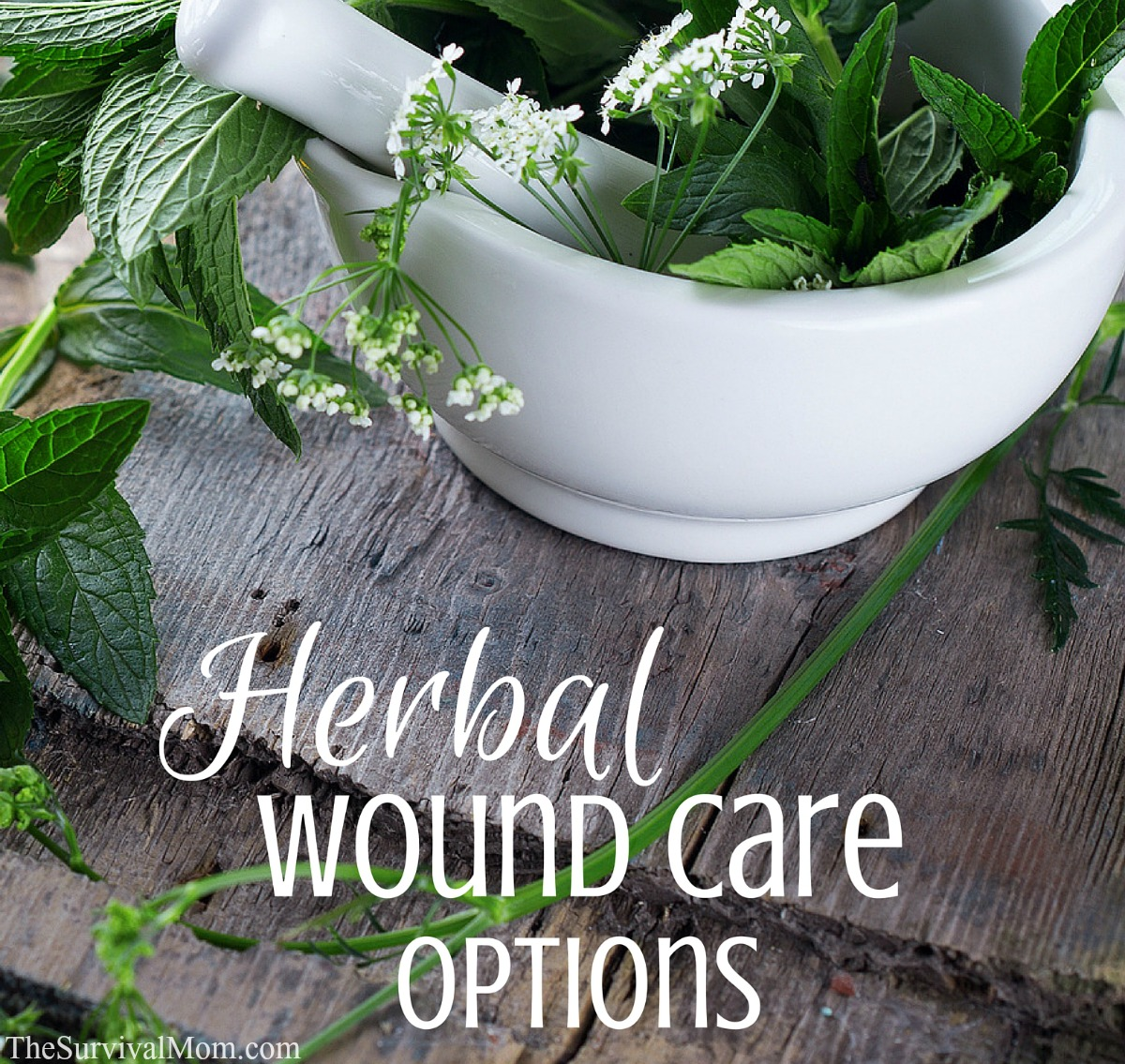Herbal wound care FB size