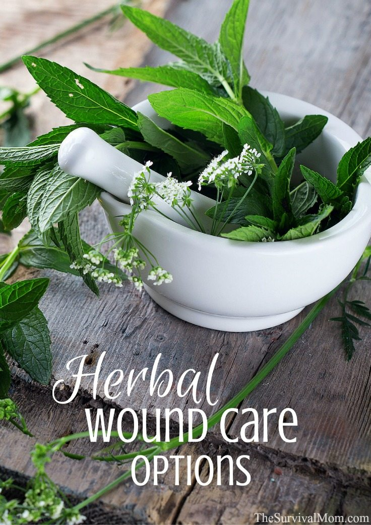 Herbal Wound Care Options - Survival Mom