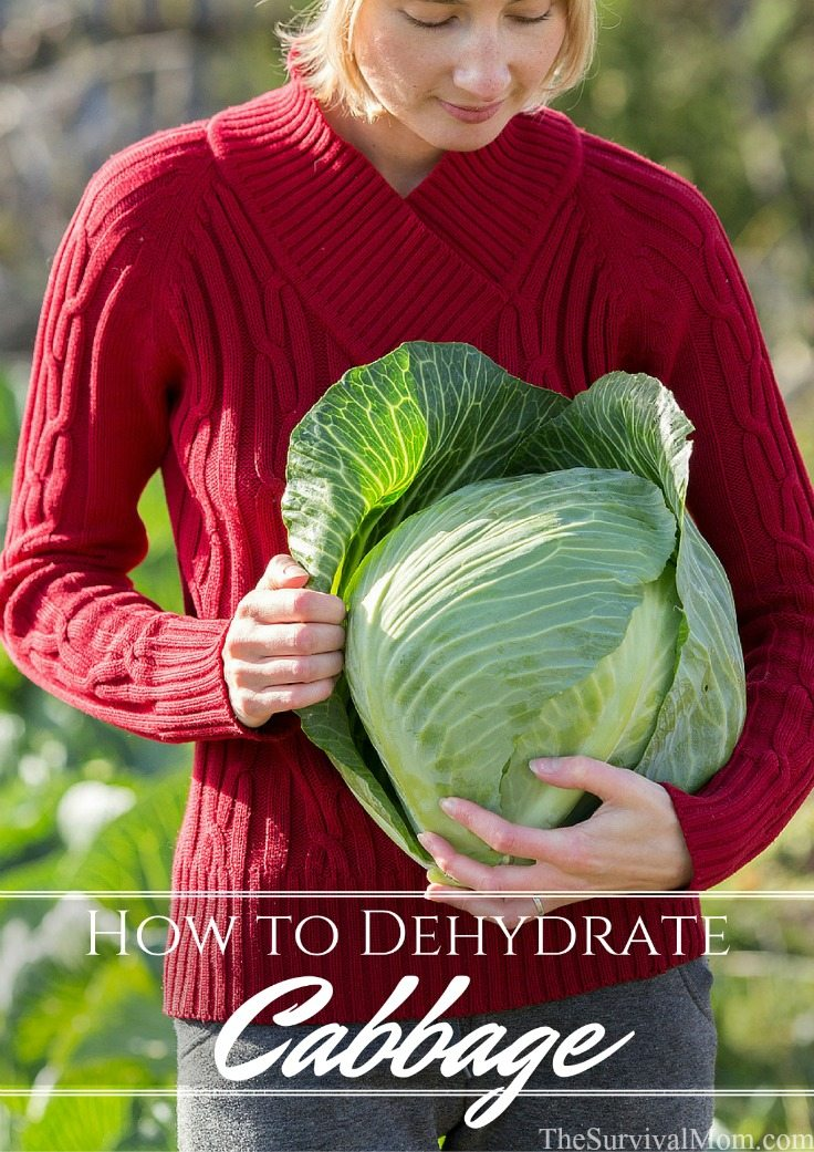 How to Dehydrate Cabbage via The Survival Mom