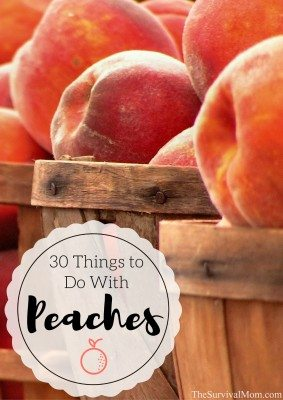 30 Things to do With Peaches