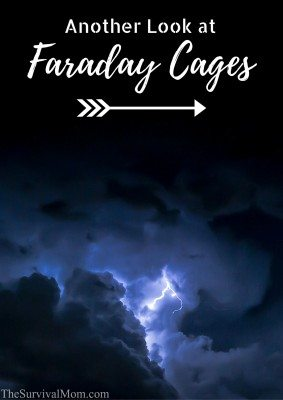 Another Look at Faraday Cages