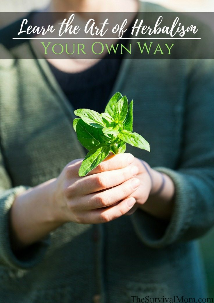 One way to care for your family's health is to learn herbalism. Here we share information about herbalist schools and a DIY herbalist education.
