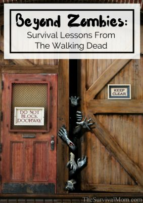 Beyond Zombies: Survival Lessons From The Walking Dead