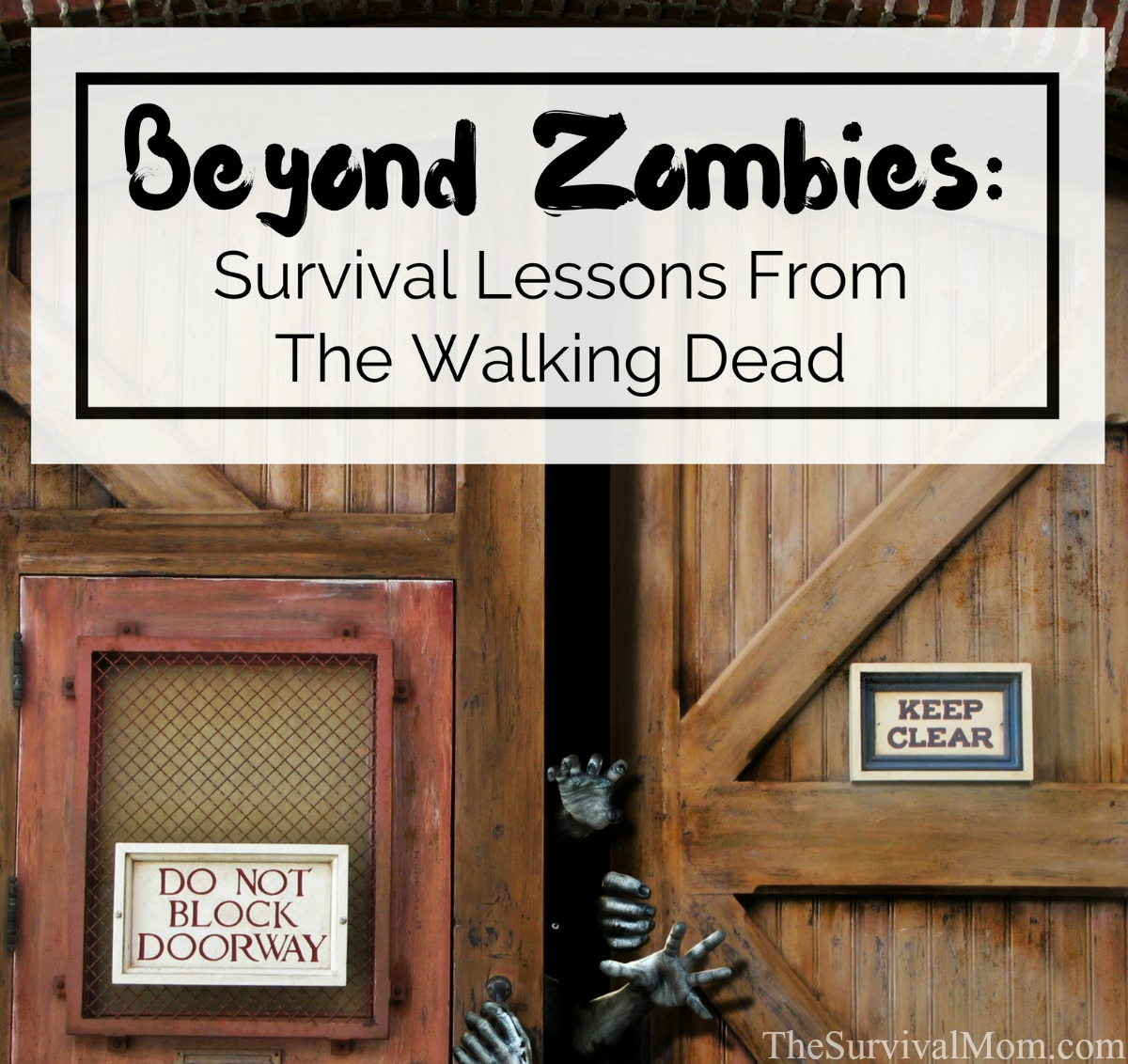 lessons from the walking dead