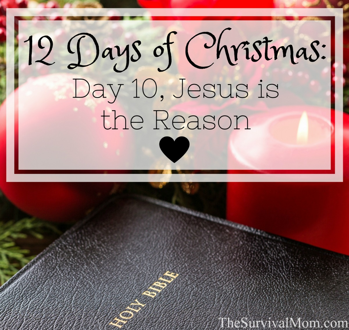12 Days of Christmas Day 10 Jesus is the Reason via The Survival Mom