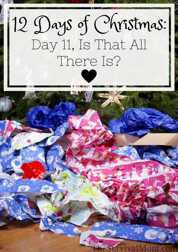 12 Days of Christmas Day 11 Is That All There Is via The Survival Mom
