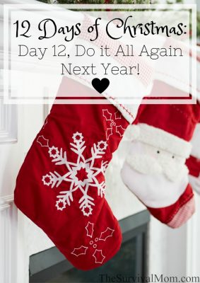 12 Days of Christmas: Day 12, Do It All Again Next Year!