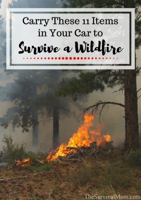 Carry These 11 Items In Your Car to Survive a Wildfire