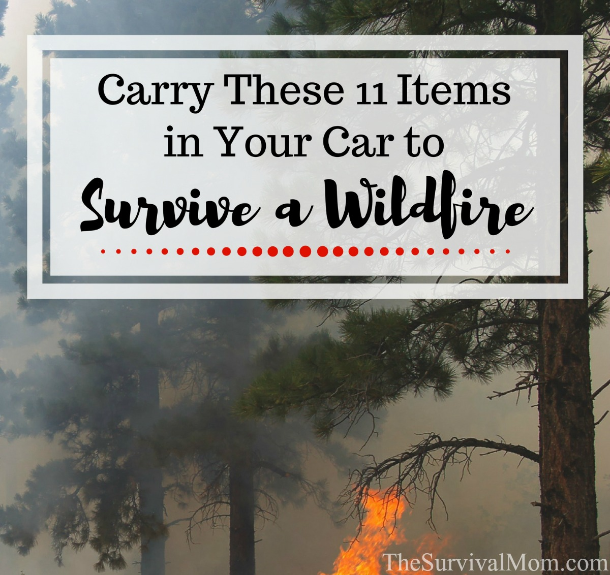 items-in-car-survive-wildfire-2