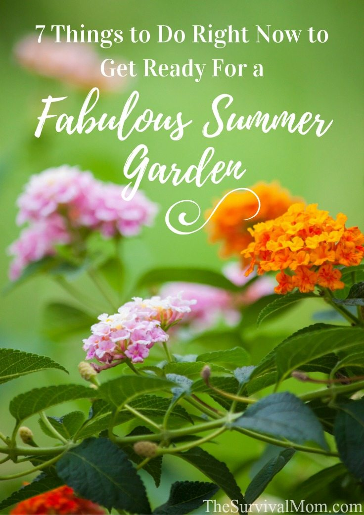 7 Things To Do Right Now To Get Ready For a Fabulous Summer Garden