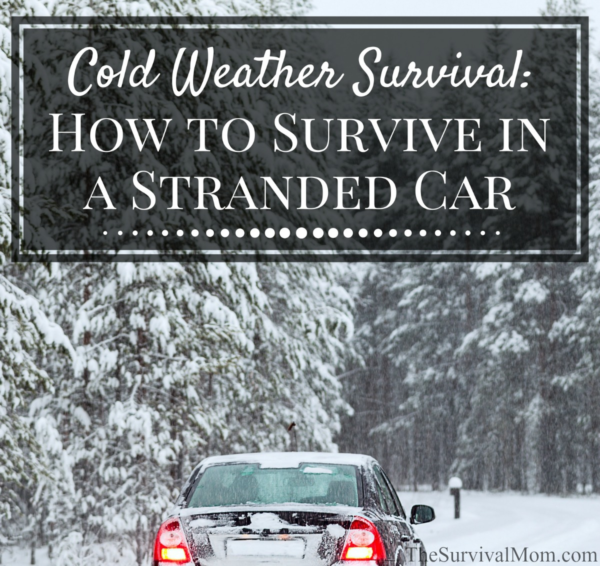 survive stranded car winter