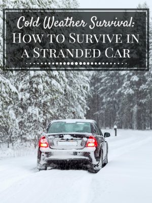 Cold Weather Survival: Survive in a Stranded Car