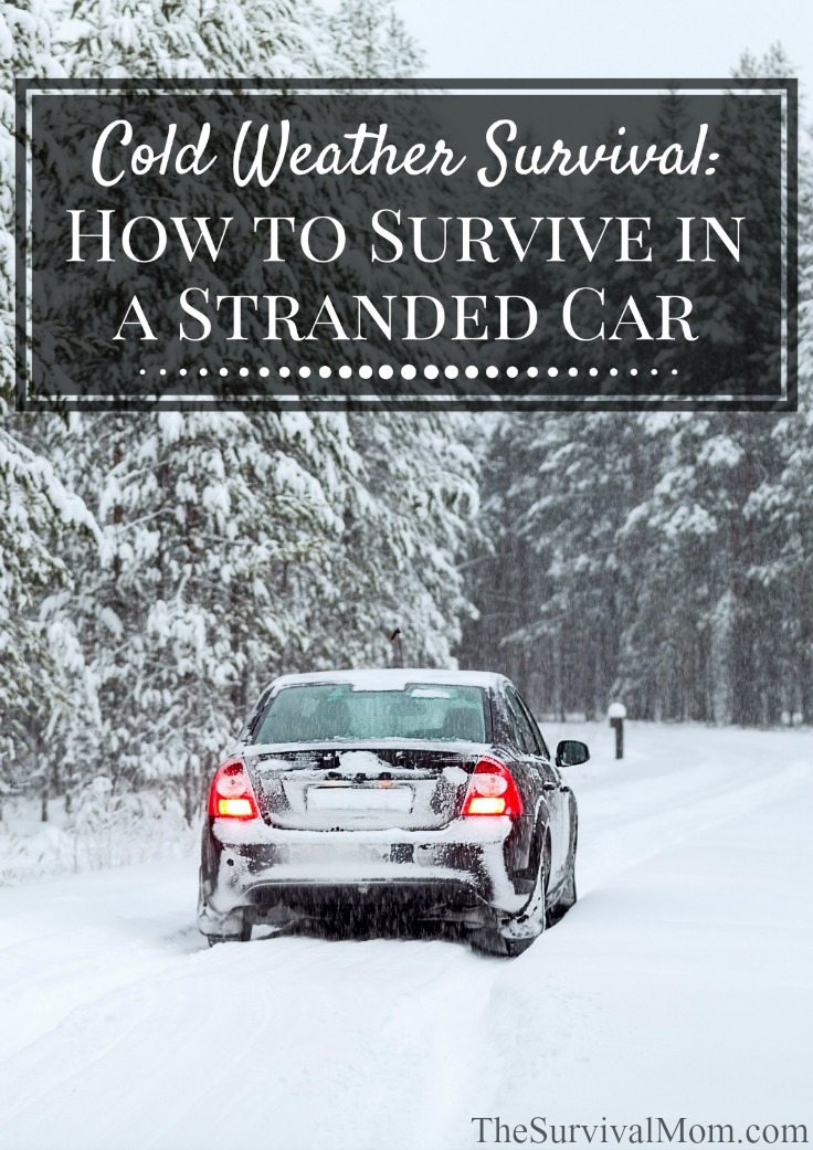 survive stranded car
