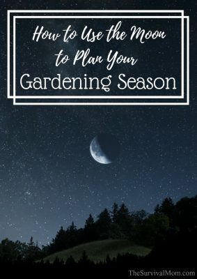 How to Use the Moon to Plan Your Gardening Season