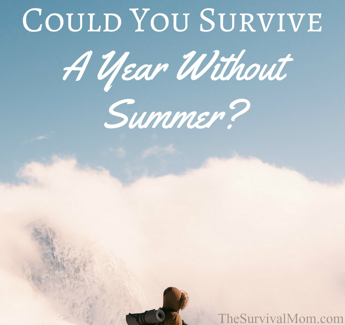 year without a summer