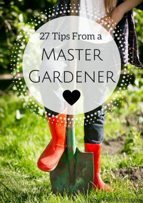 master gardener tips