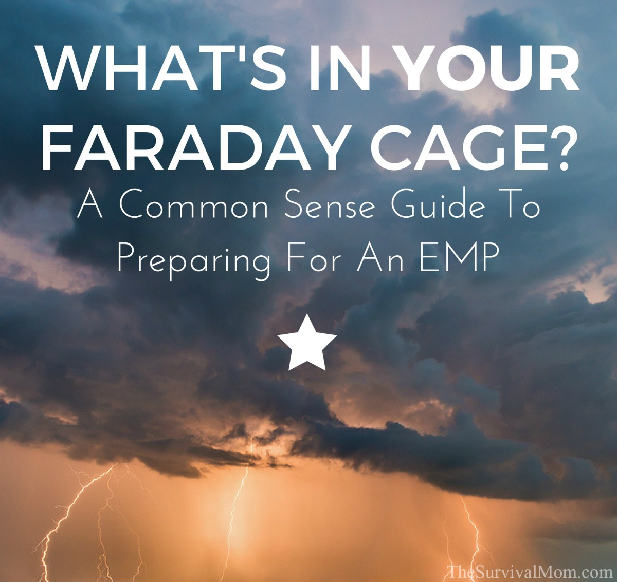 What's In Your Faraday Cage A Common Sense Guide to Preparing For An EMP via The Survival Mom