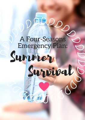 A Four-Seasons Emergency Plan: Summer Survival