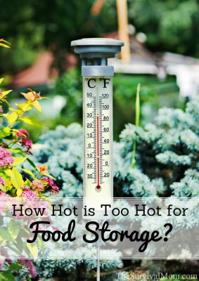 How Hot is Too Hot for Food Storage?