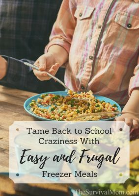Tame Back To School Craziness With Easy And Frugal Freezer Meals
