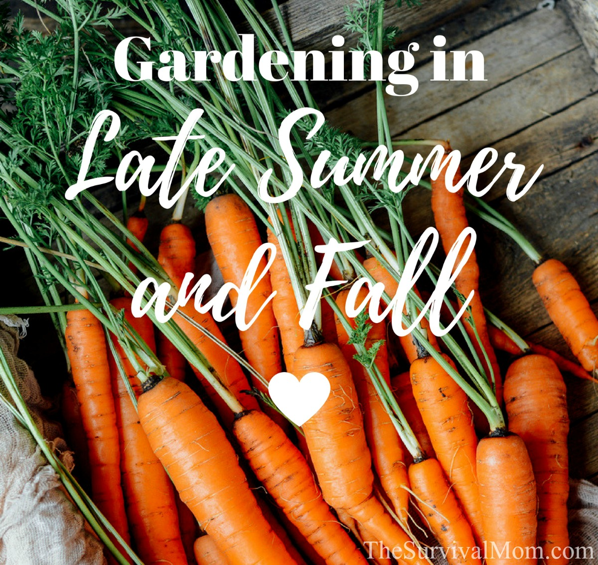 gardening in late summer and fall survival mom