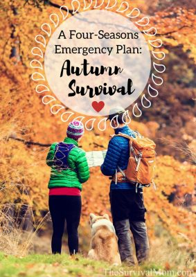 A Four Seasons Emergency Plan: Autumn Survival