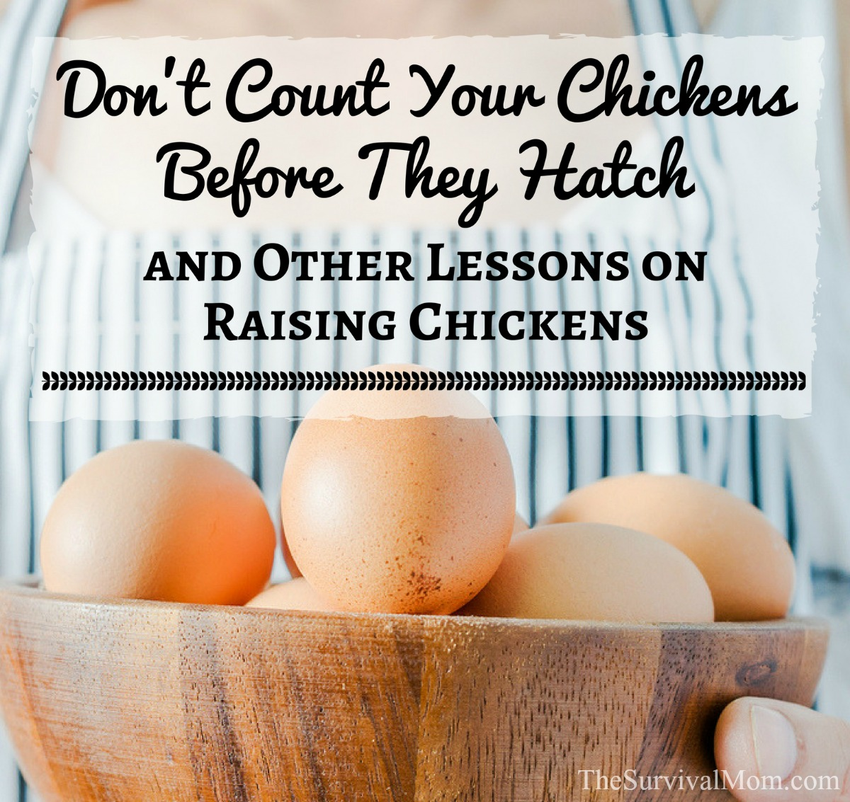 Don't Count Your Chickens Before They Hatch and other lessons on raising chickens via The Survival Mom