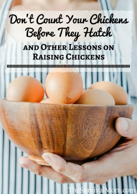 Don't Count Your Chickens Before They Hatch–and other lessons on raising chicks