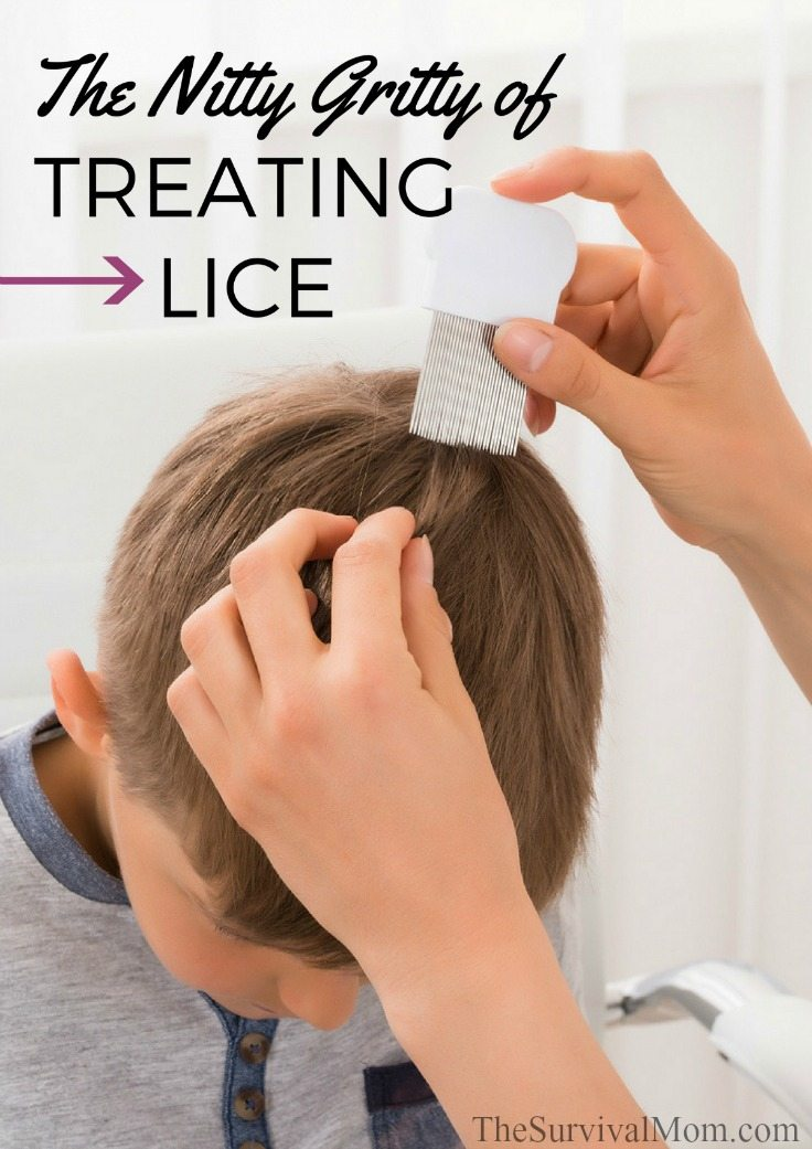 The Nitty Gritty of Treating Lice via The Survival Mom