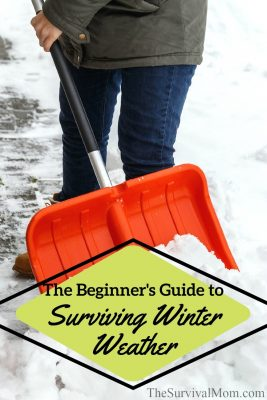 The Beginner's Guide to Surviving Winter Weather