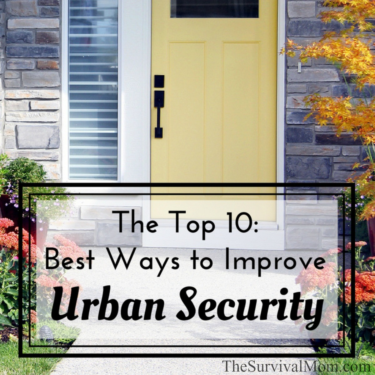 The Top 10: Best Ways to Improve Urban Security via The Survival Mom