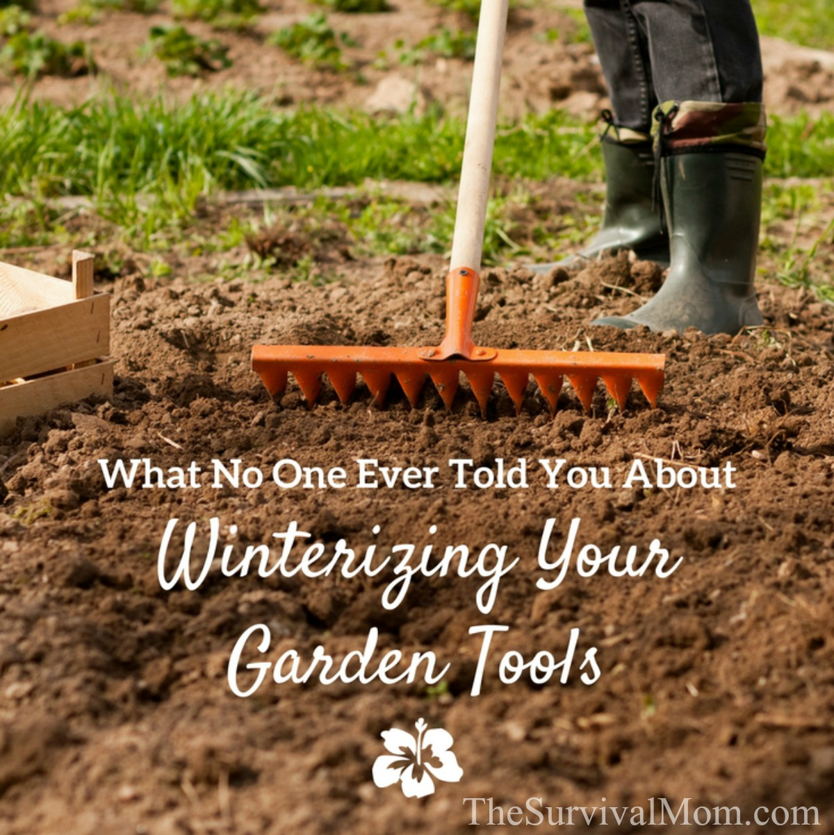 What No One Ever Told You About Winterizing Your Garden Tools - The ...