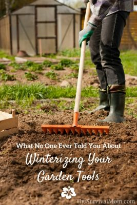 What No One Every Told You About Winterizing Your Garden Tools