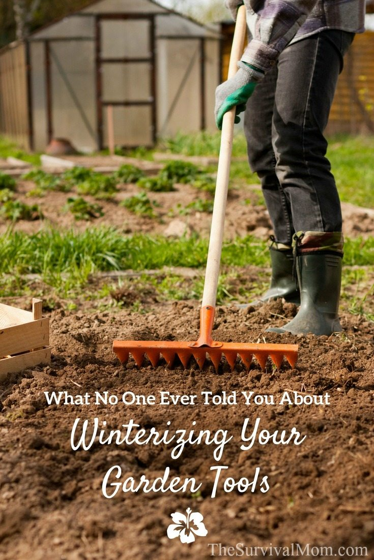 What no one every told you about winterizing your garden for Winter garden maintenance