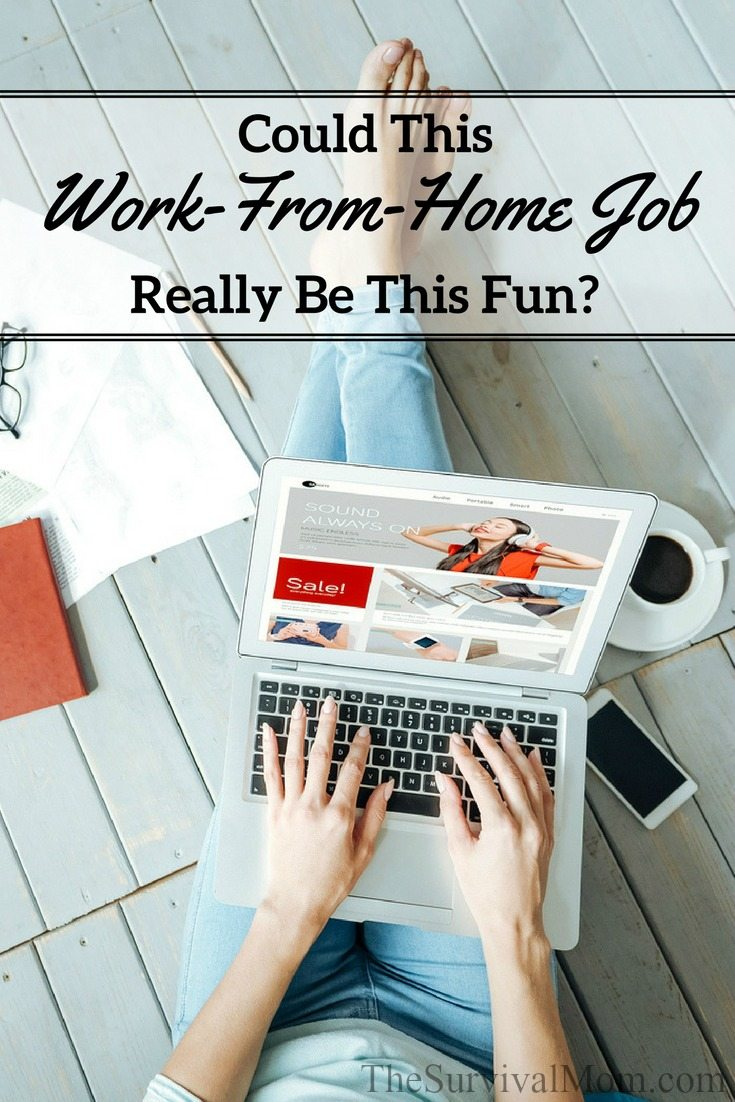 Could This Work From Home Job Really Be This Fun Survival Mom