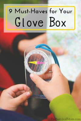 9 Must-Haves for your Glove Box
