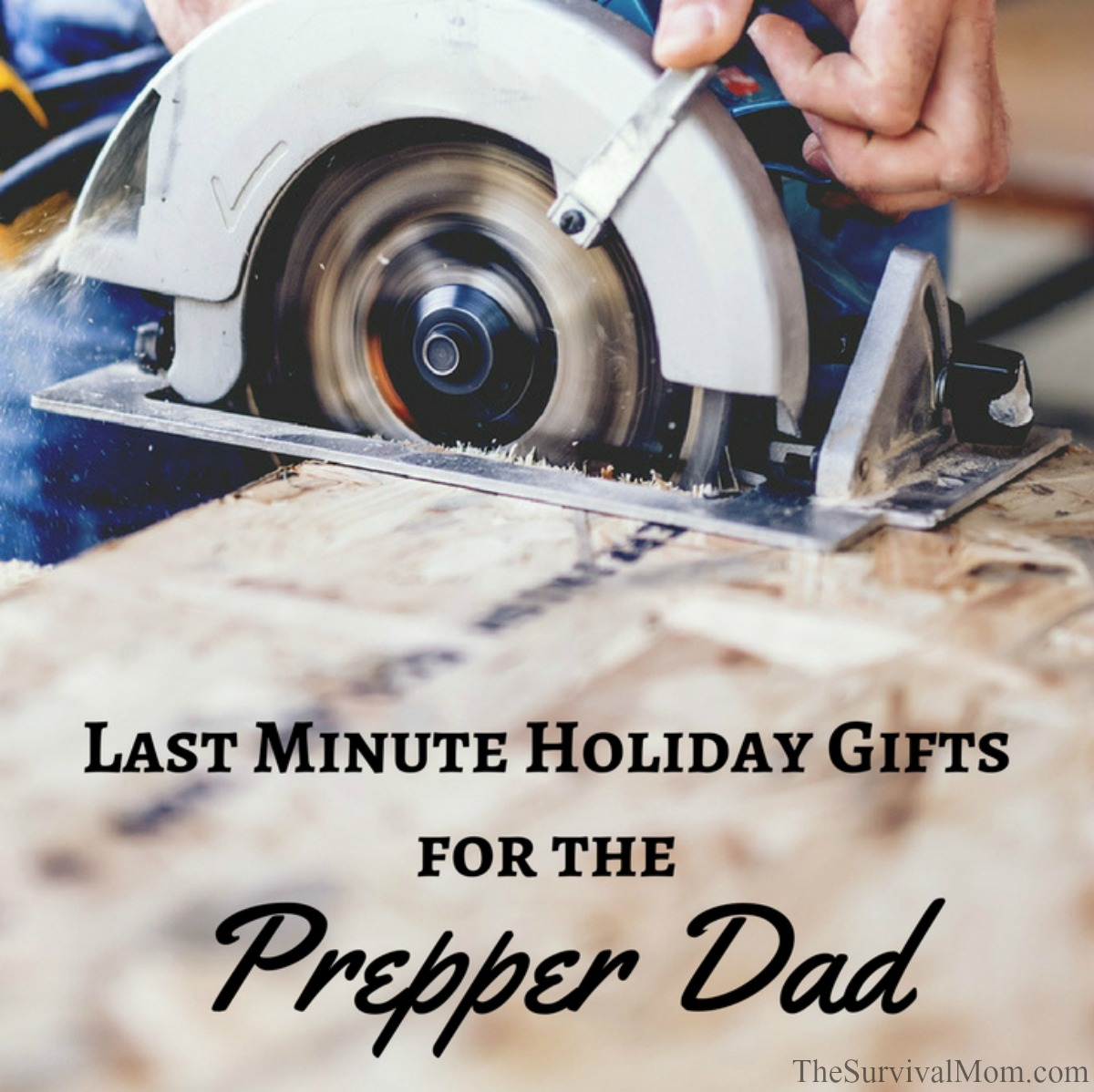 Last Minute Holiday Gifts for the Prepper Dad via The Survival Mom