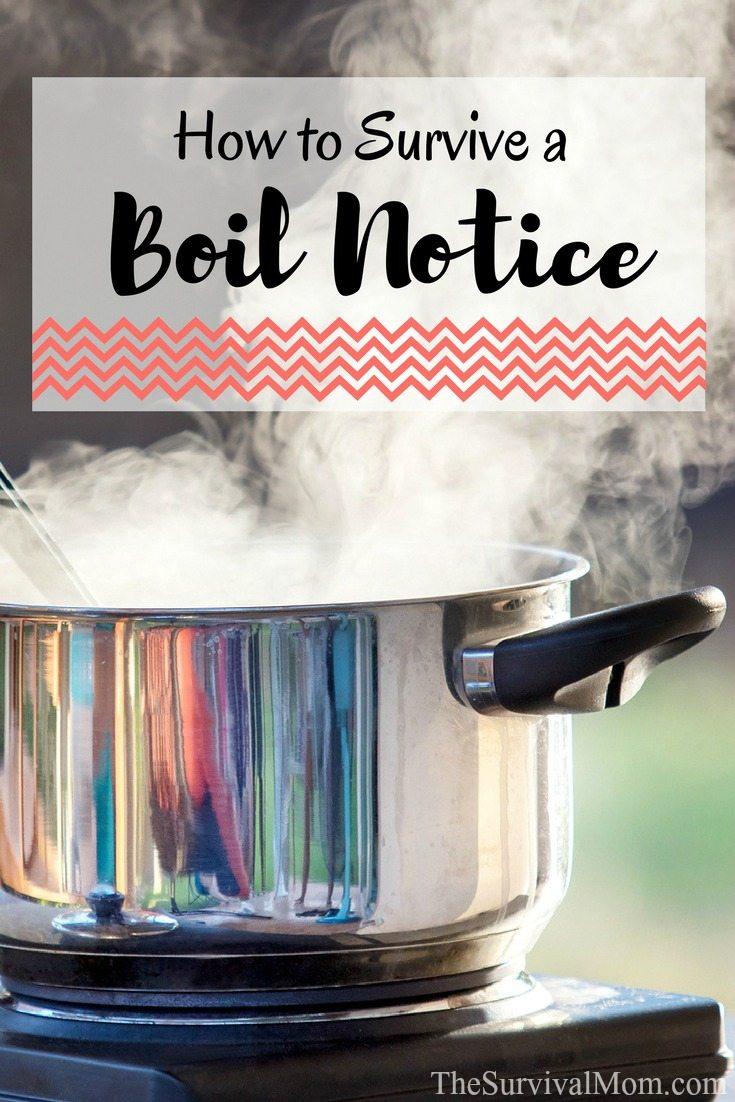survive boil notice