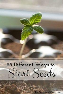25 Different Ways to Start Seeds