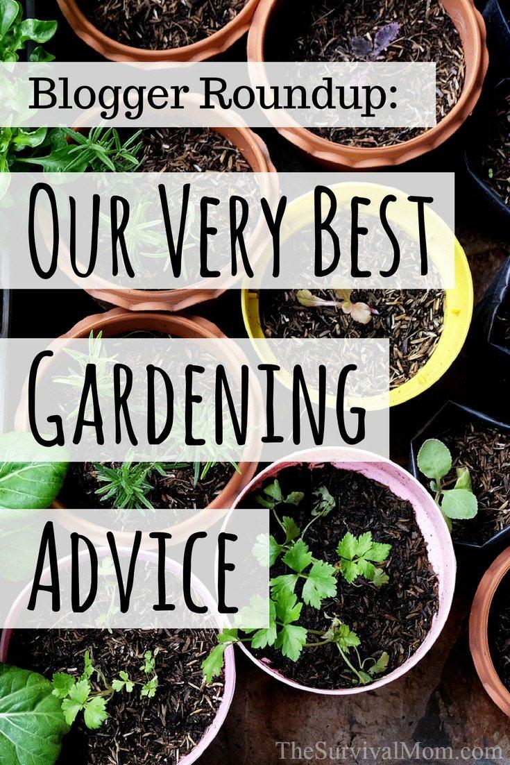 blogger round up best gardening advice