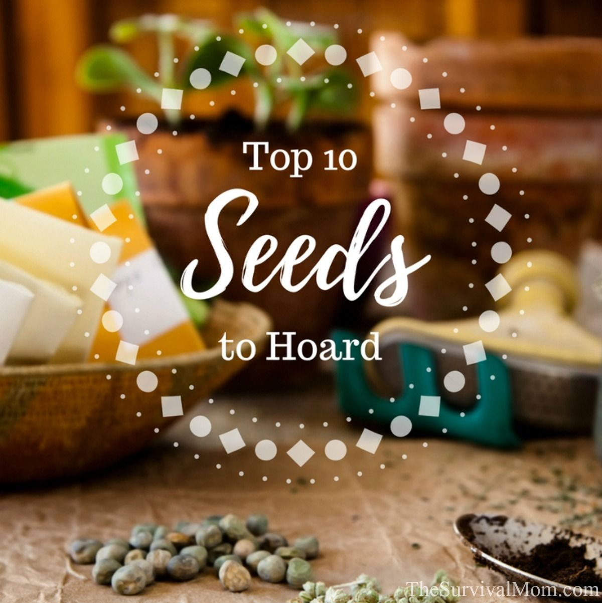 seeds to hoard, most important seeds, seed vault