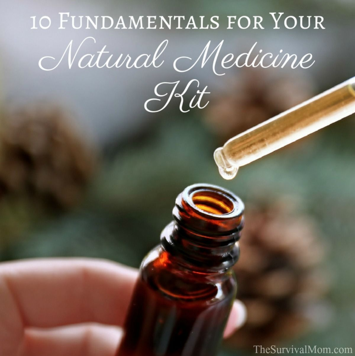 10 Fundamentals for Your Natural Medicine Kit via The Survival Mom