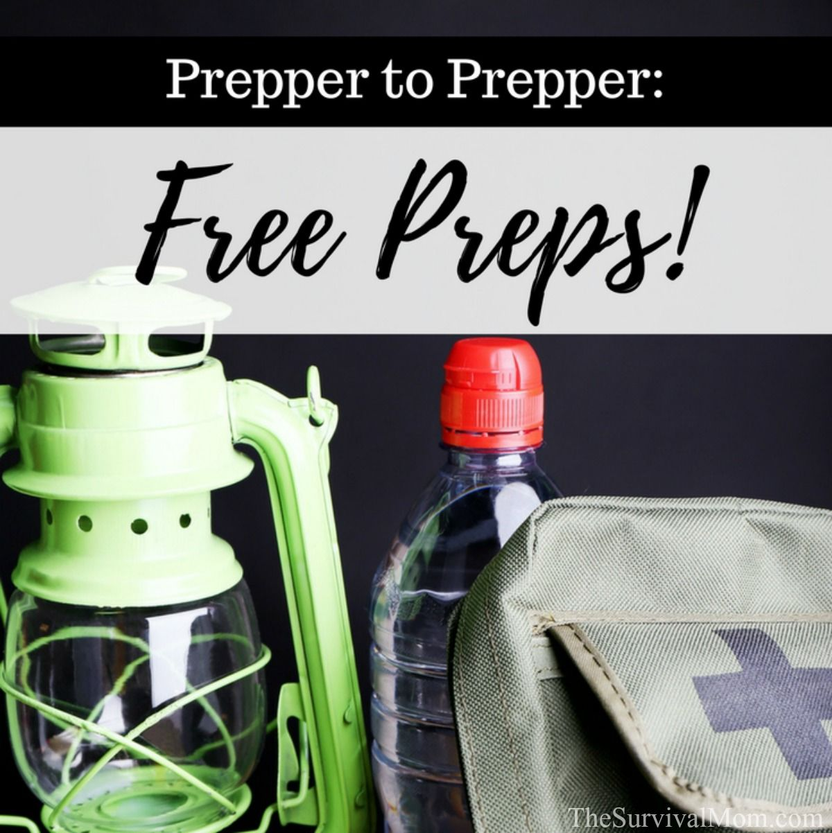Prepper to Prepper Free Preps via The Survival Mom