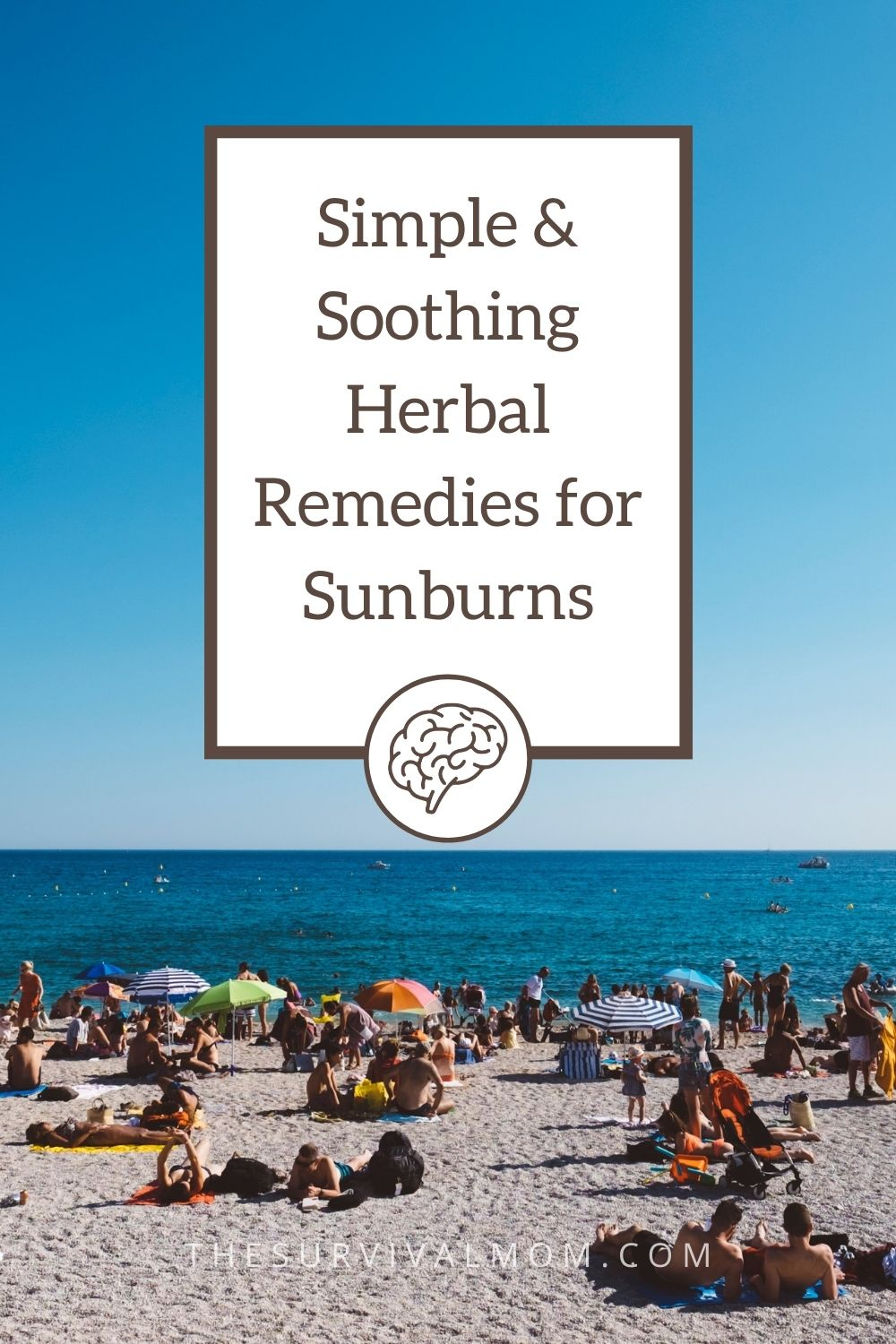 Simple and Soothing Herbal Remedies for Sunburns via The Survival Mom