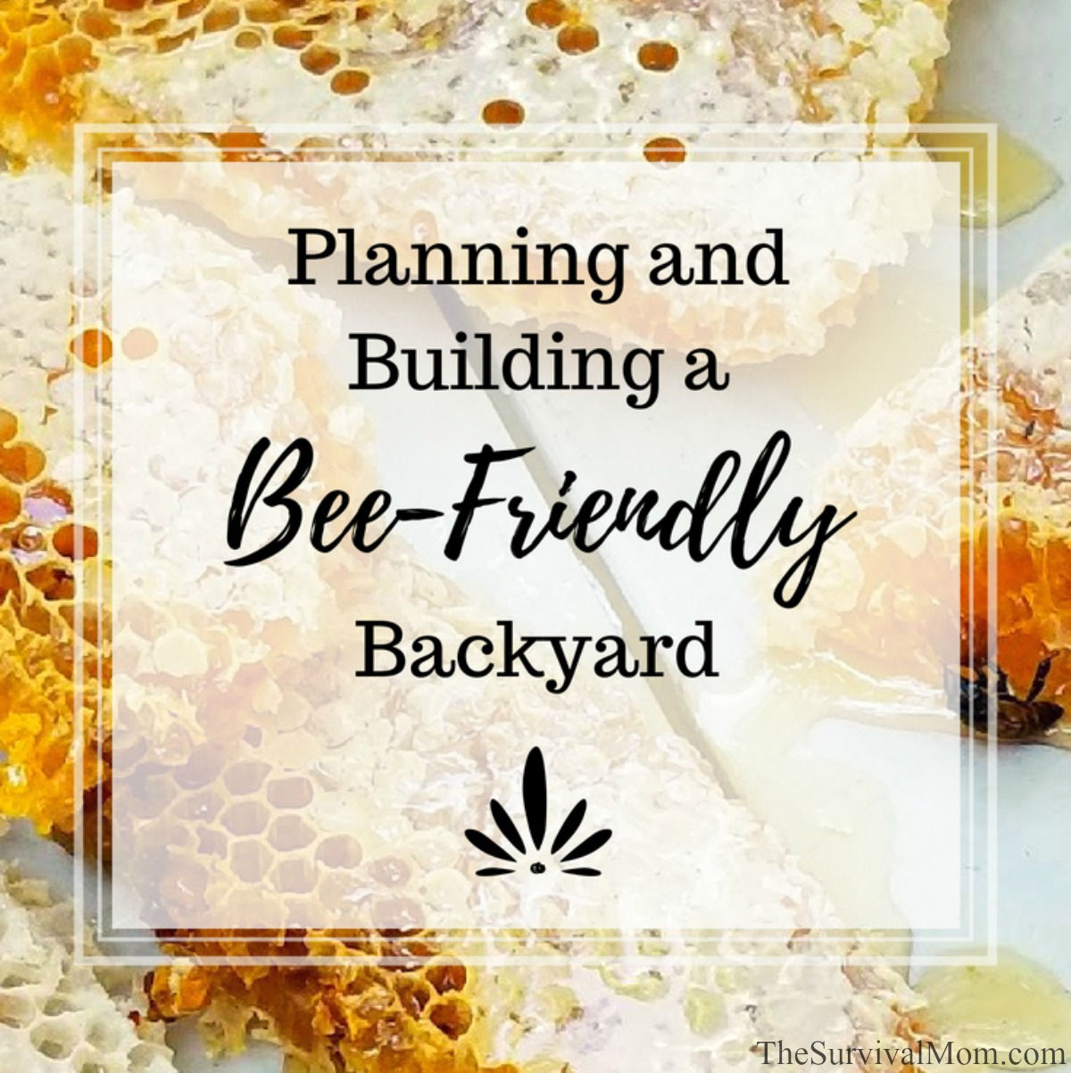 Planning and Building a Bee-Friendly Backyard via The Survival Mom